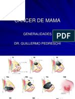 cancer-de-mama-Dr.-Pedreschi.ppt