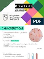 Salmonella Typhi - Presentación