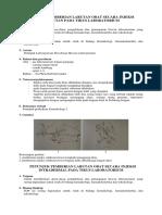 Petunjuk Pemberian Larutan Obat Pada Tikus Laboratorium