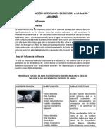 PLAN DE ELABORACIÓN DE ESTUDIOS DE RIESGOS A LA SALUD Y AMBIENTE.docx