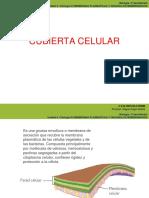 citologia 9
