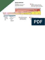 Aterosclerosis.pdf