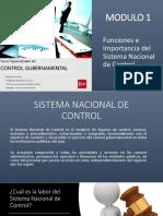 control Gubernamental peru