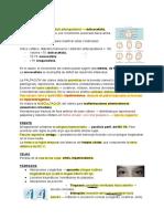 Resumen del ARGENTE_ Semilogía de cabeza y cuello