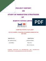 20068971.pdf