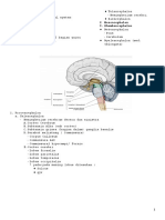 01.Neural Sistem.doc