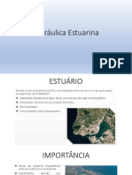 Hidráulica Estuarina