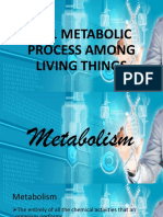 12.01 Metabolic Process