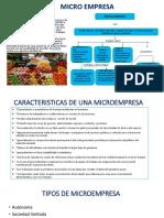 Micro Empresa