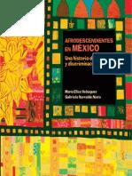 Afrodescendientes en México.pdf