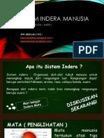 183758635 Sistem Indera Ppt