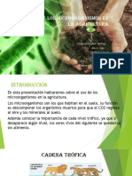 El Uso de Los Microorganismos en La Agricultura