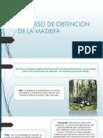 proceso de la obtencion de la madera.pptx