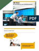 DVSC_with_DVM_WoC.pdf