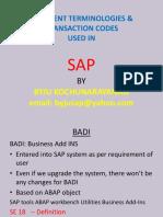 differenttermininologiesusedinsap-130806153903-phpapp02.pdf