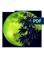 cannabis-moon.pdf