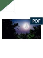 how-to-use-the-moon-to-grow-marijuana-WeedSeedsShop-3.pdf