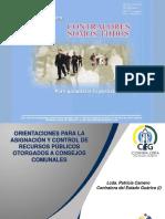 Ponencia 1 Patricia Camero Consejos Comunales