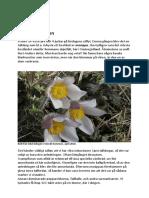 Rapport 2018-10-06 Fushultadammen