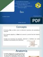 Ileo caso clinico.pptx