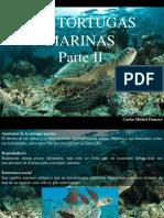 Carlos Michel Fumero - Las tortugas marinas, Parte II.pptx