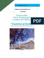 TecnicaPNL-CaminoalExito-AprenderPNL.pdf