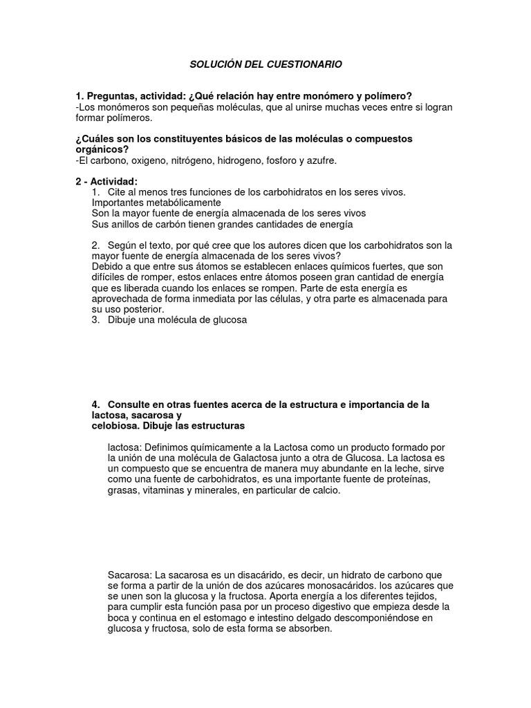Taller Consulta Biologia Carbohidratos Arn