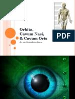 Cavum Orbita