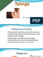 Telinga SD Peradaban