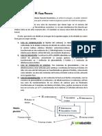 B050.Fotosintesis.iii FaseOscura