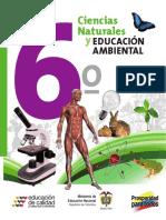 CN_Grado6.pdf