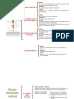 presentacion-de-anatomia-miembros-inferiores.pptx