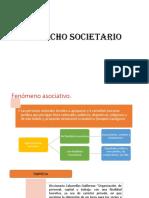 DERECCHO-SOCIETARIO