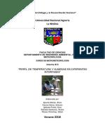 INFORMEmicro.pdf