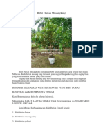 TERBAIK.0813-2711-9234, Jual Bibit Durian Musang King, Bibit Durian Musang King Kaki Tiga,
