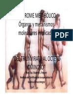 Síndrome-Metabólico.-Del-triunvirato-al-octeto-ominoso-PAESANI.pdf