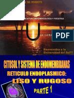 Biologia - Sistema de Endomembranas(1)