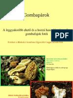 Összetéveszthető gombapárok (1)