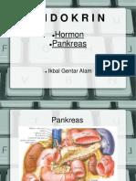 hormon_pankreas.pdf