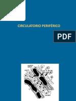 Circulatorio periferico.ppt