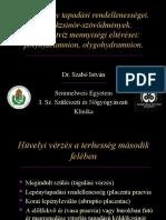 A-mehlepeny-tapadasi-rendellenessegei.pdf