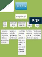 Organizador Visual INGRESOS PUBLICOS