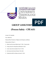 cover report and table safety.pdf