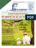 Semanario Católico Camino 29.07.2018