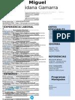 52 Curriculum Vitae Cordial 97 2003