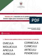Practica n.3. Reglas Intuitivas de Evolución Del Latín Al Castellano
