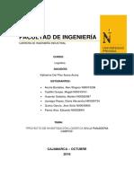 Facultad de Ingeniería (1)