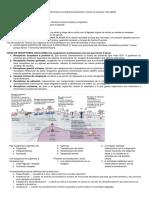 Bioquímica Resumen