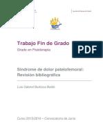 Sindrome de Dolor Patelofemoral Revision Bibliografica