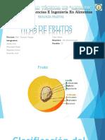 Tipos de Frutos QO Team.pptx